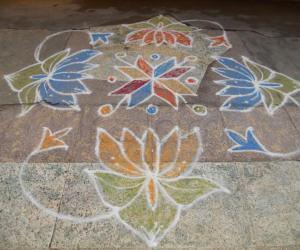 Rangoli: lotus-a