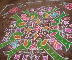 Rangoli: Parrot Jodis