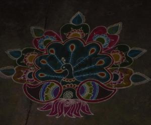 Rangoli: margazhi rangoli