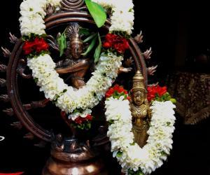 2019- Shivratri- Lord Nataraj and Goddess Shivagamasundari
