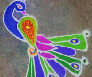 Rangoli: Multi coloured peacock