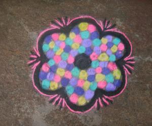 multi colour flower
