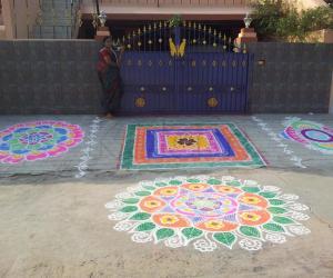 Rangoli: RANGOLI FOR THE DAY OF MATTU PONGAL (2013)