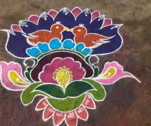 Rangoli: Today rangoli for pongal fest