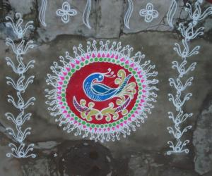 Best Peacock rangoli