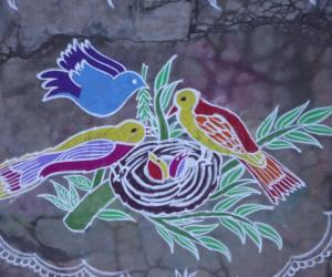 Nest with Birds