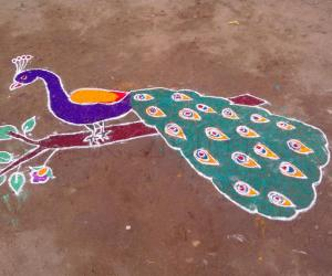 freehand peacock rangoli