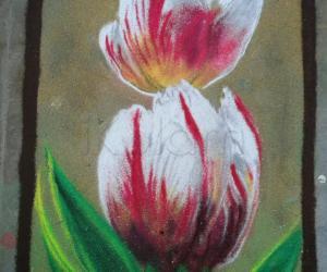 Rangoli: tulip flower
