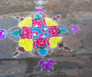 Rangoli: festival rangoli.