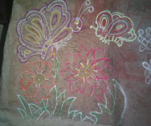Rangoli: Butterfly rangoli