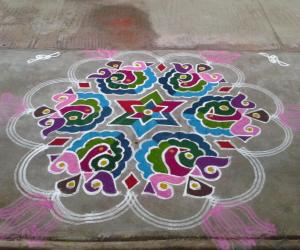 Rangoli: Peacocks with Sangu
