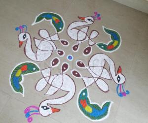 FANCY DRESS COMPETITION FOR WHITE PEACOCKS.