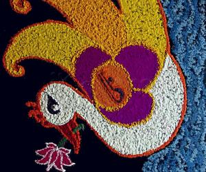 Freehand Swan in pond with Lotus rangoli