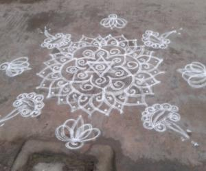 DD star deepam lotus kolam