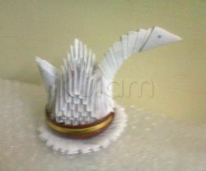white swan with paper