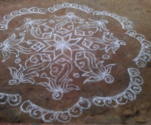 Rangoli: Sangu with Lotus