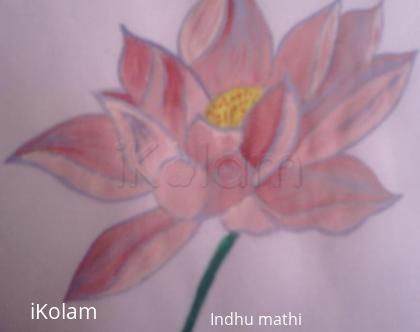 Rangoli: Watercolor Lotus