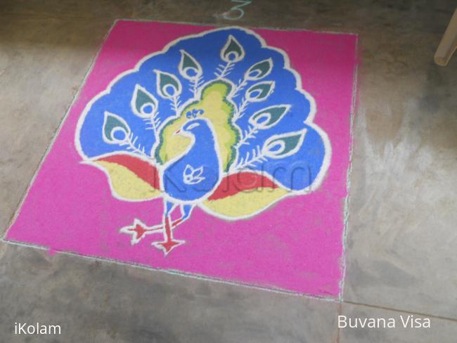 Rangoli: peacock