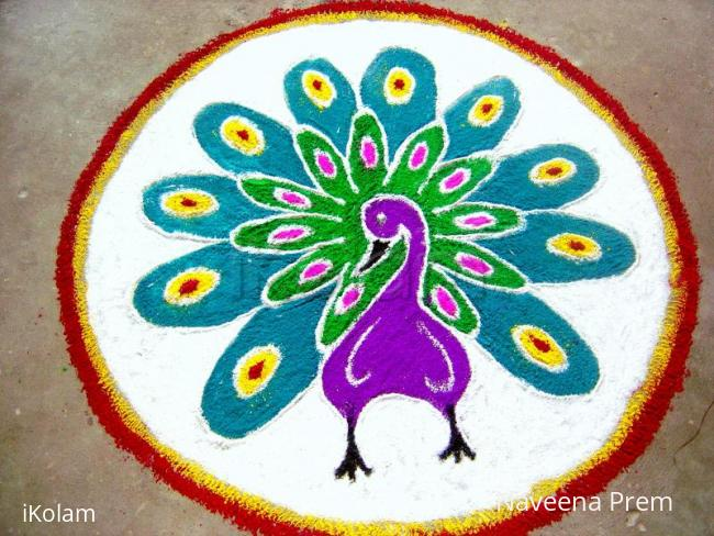 Rangoli: Free hand peacock