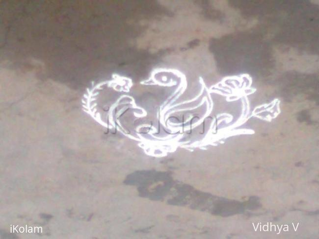 Rangoli: Duck Apartment kolam
