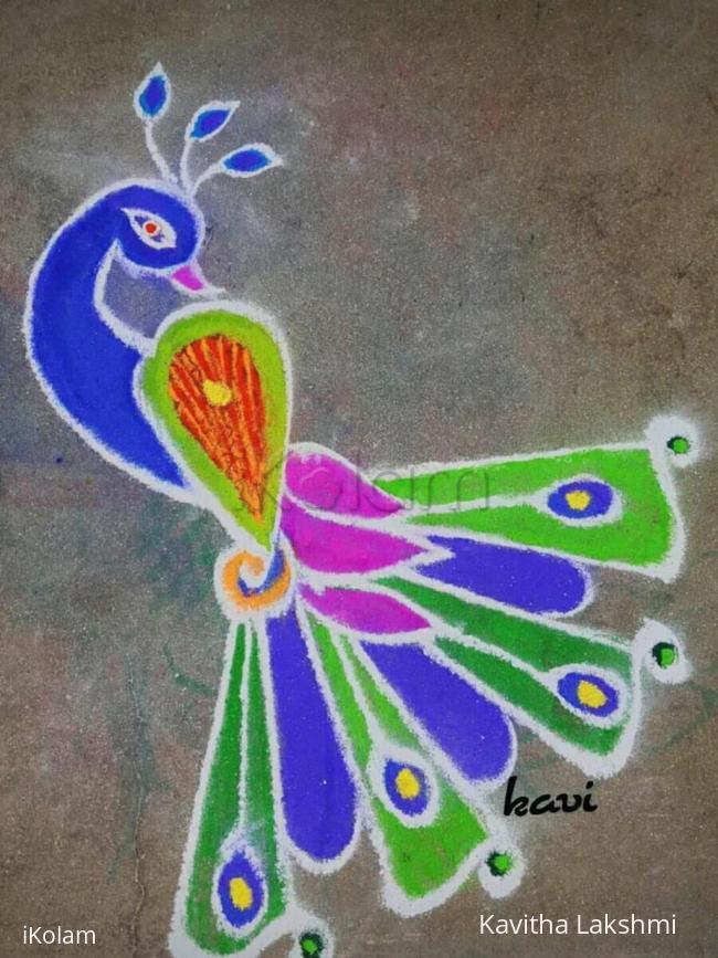 Rangoli: Multi coloured peacock