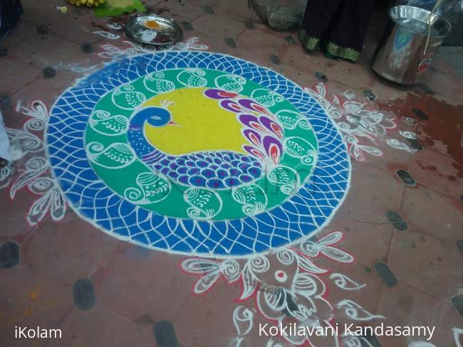 Rangoli: Peacock  rangoli