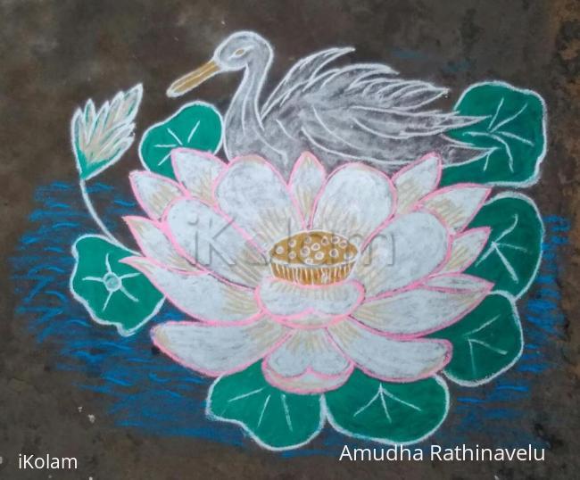 Rangoli: Lotus and Duck is waiting