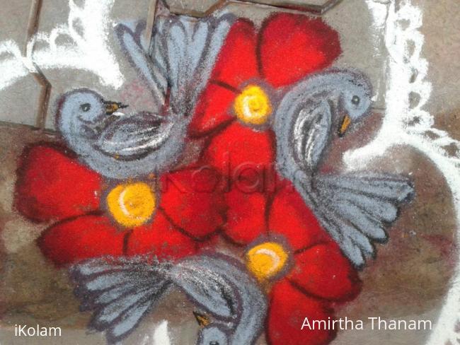Rangoli: 5 to 3 dots birds kolam