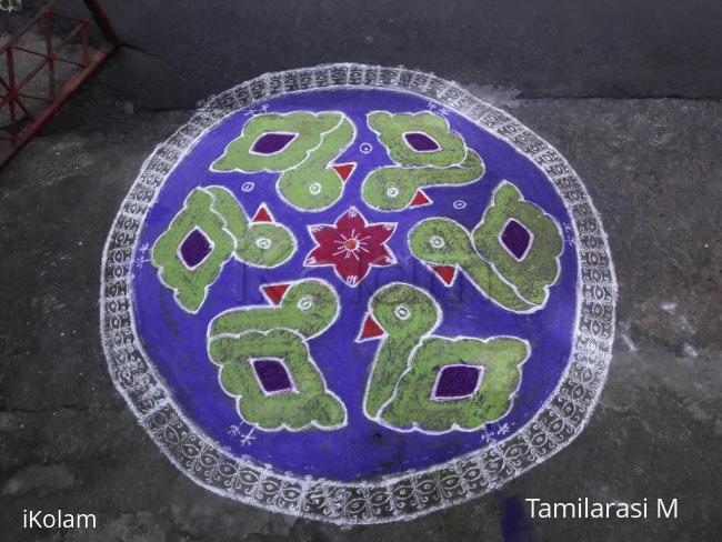 Rangoli: MARGAZHI KOLAM 27-12-2016