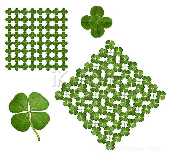 Rangoli: May the luck of the Irish rub on you today!