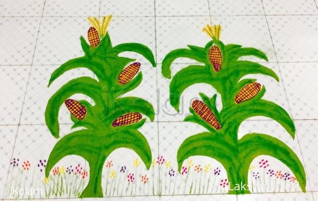 Rangoli: Happy National corn day